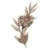 Wall plaque branch with Daisy right 20x24cm - 7,8x9,4in Bronze ornament for tombstone 54006