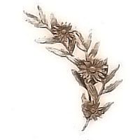 Wall plaque branch with daisies left 15x32cm - 5,9x12,5in Bronze ornament for tombstone 54008