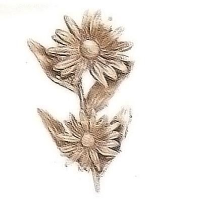 ornement fun raire branche avec daisy sous le soleil 11x16cm d coration de bronze 54010. Black Bedroom Furniture Sets. Home Design Ideas